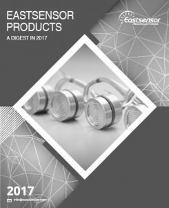 Download Eastsensor Products Catalog 2017-bw