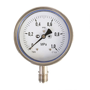 ESG503 Stainless Steel Bourdon Tube Pressure Gauge - v2.0