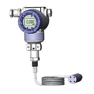 ESL040M Separated Liquid Level Transmitters