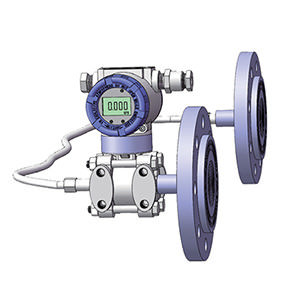 Remote Diaphragm Seal Pressure Transmitter double