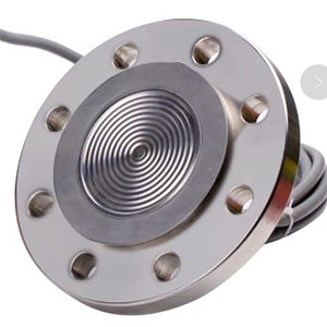 Remote Mount Diaphragm Seal